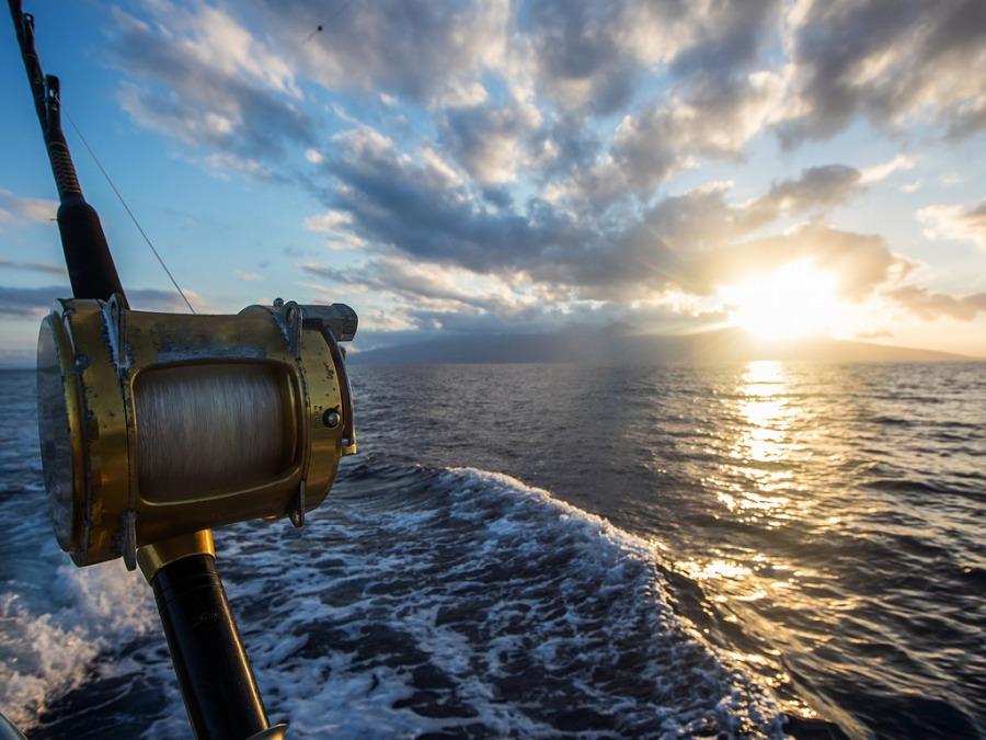 船上で手に汗握るマグロの一本釣りを体験